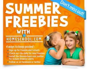 2013-Summer-Freebie-Mail