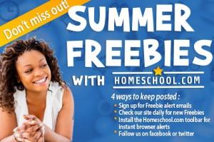 2013-summer-freebie-Facebook