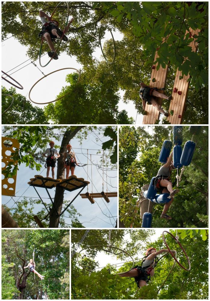 Asheville Treetops 2
