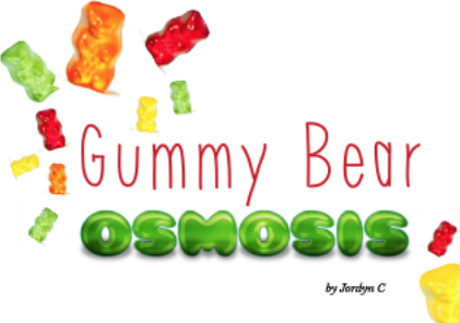 Science Experiment: Gummi Bear Osmosis