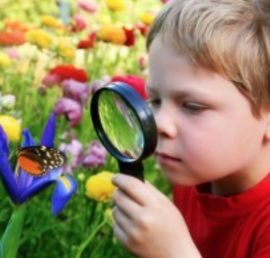 Homeschool Science - Get Outdoors!