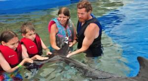 Marineland Dolphin Adventure