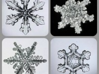 snowflake-collage