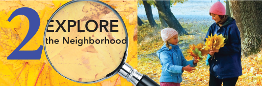 2. Explore the Neighborhood