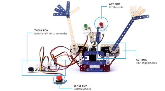 Welcome-bot robot by an 11-year-old student