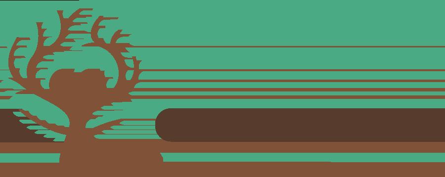Oak Meadow Logo