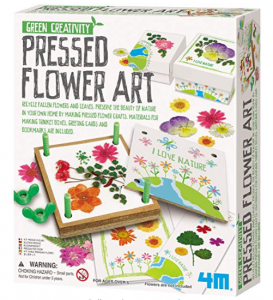 Preschool Pressed Flower Art