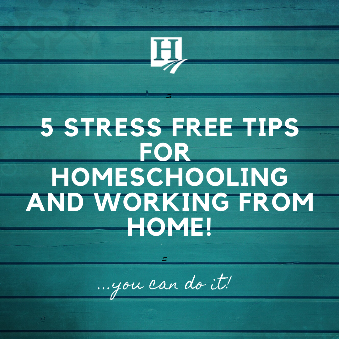 5 Tips that Will Help You Work from Home and Be STRESS-FREE this year!